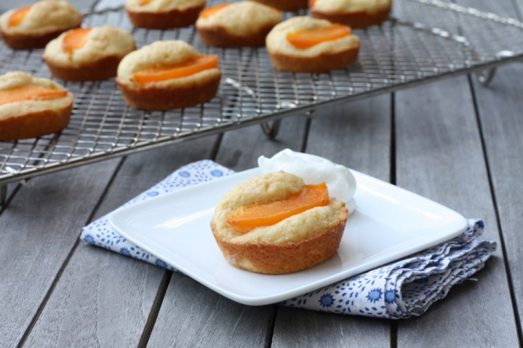 Apricot Cakes
