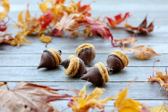 Chocolate Peanut Butter Acorns | First Look, Then Cook