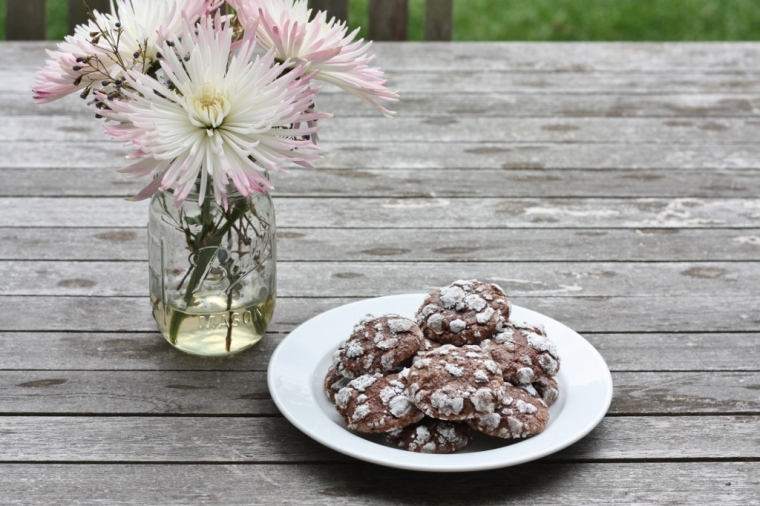 Chocolate Muscat Cookies